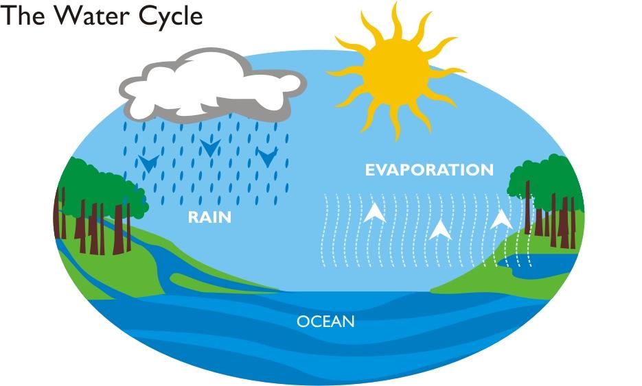 Картинка Круговорот Воды В Природе Для Детей