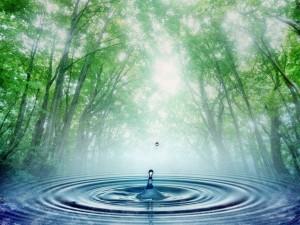 Вода как актив