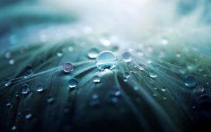 Что будет если пить дождевую воду?