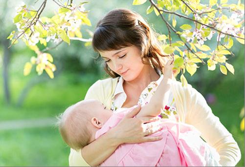можно ли пить укропную воду кормящей маме
